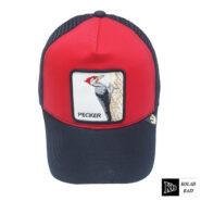 کلاه پشت تور سرخ آبی