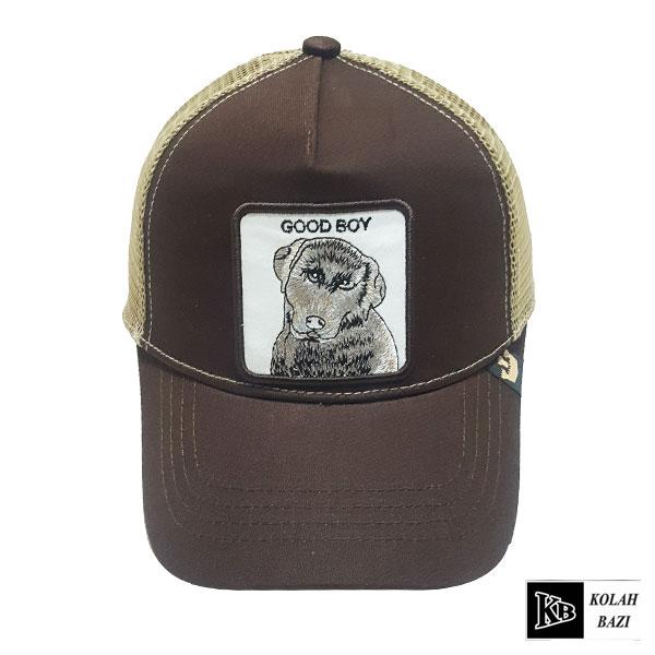 کلاه پشت تور کوالا