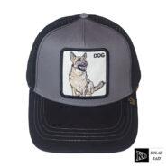 کلاه پشت تور سگ